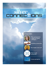 Silver connections cover